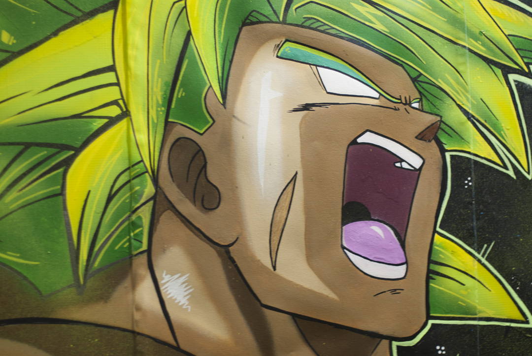 Dragon Ball Z Graff Comicon 19